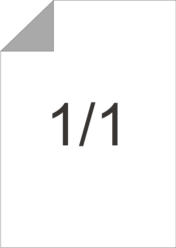 2000ks | ČB potisk - A3, 1/1 90g